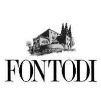 Fontodi | vendita online Fontodi